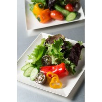 Sugarcane biodegradable dish for catering