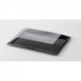 Lid disposable tray