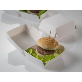 Disposable mini burger box
