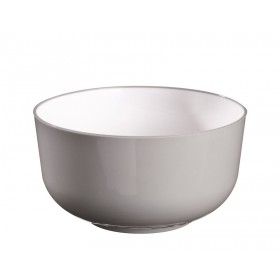 plastic single use Thaï Bowl