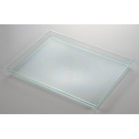 disposable plastic green Transparent tray