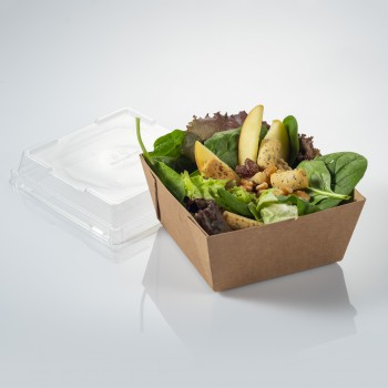Cardboard tray to take away 500ml. lid included
